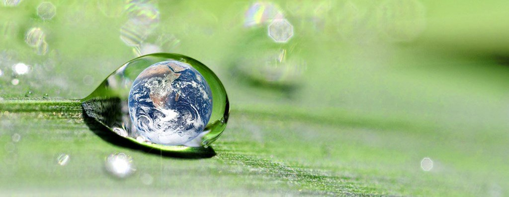 the world in a drop of water resting on a leaf